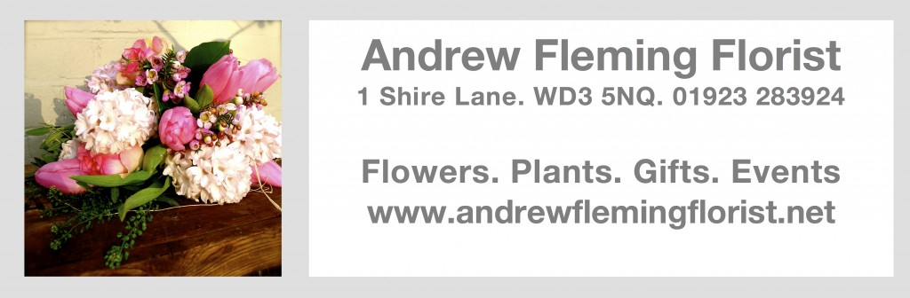 Andrew fleming ad