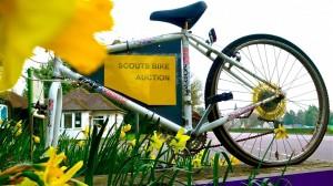 scout yellow bike