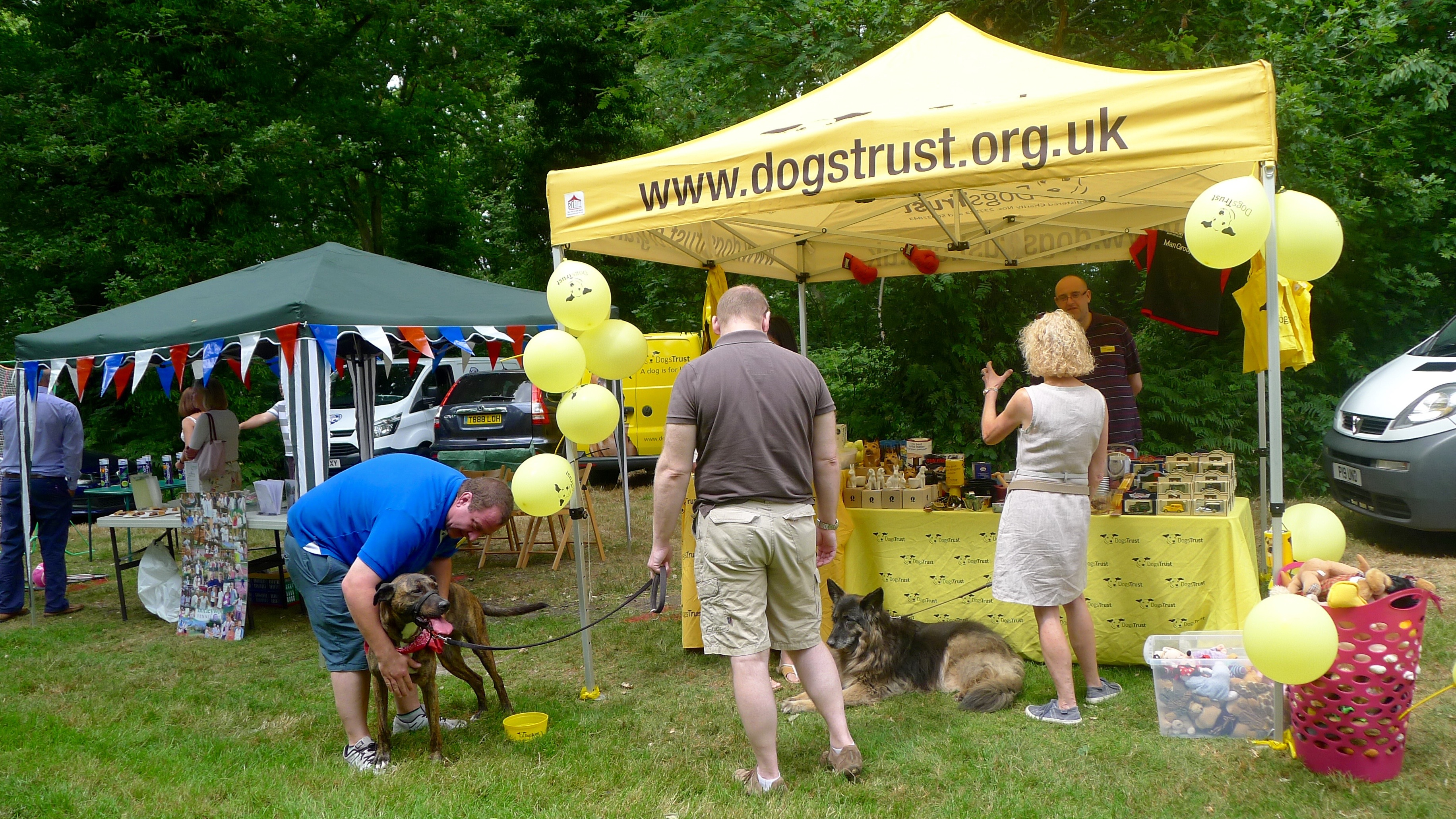 village day dogs trust